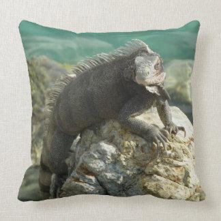 Iguana on the Rocks at St. Thomas Throw Pillow