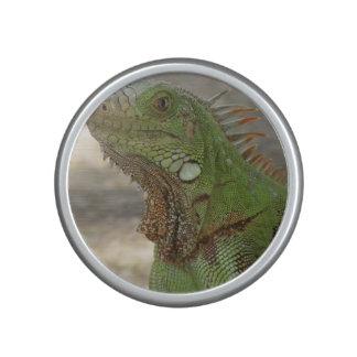 Iguana Bluetooth Speaker