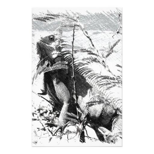 Iguana Papelería De Diseño