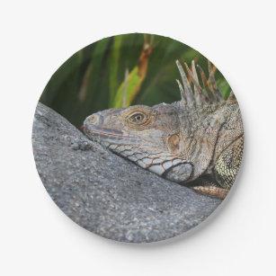 Iguana Paper Plates