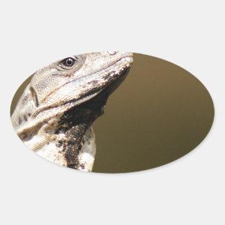 Iguana Pegatina Ovaladas Personalizadas