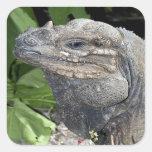 Iguana Pegatina Cuadrada