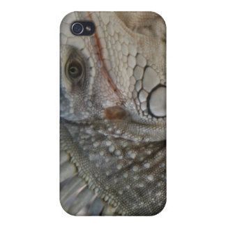 iguana  phone covers for iPhone 4