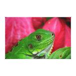 Iguana - pink and green canvas print