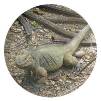 Iguana Plato De Comida