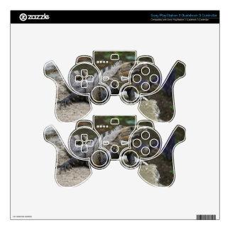 Iguana PS3 Controller Skin
