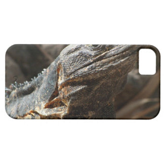 Iguana que le comprueba hacia fuera iPhone 5 carcasa