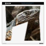 Iguana que le comprueba hacia fuera consola xbox 360 s skins