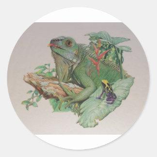 Iguana/rana que mira encendido pegatina redonda