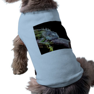 Iguana Camisas De Mascota
