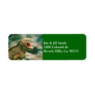 Iguana Says Rawr Label