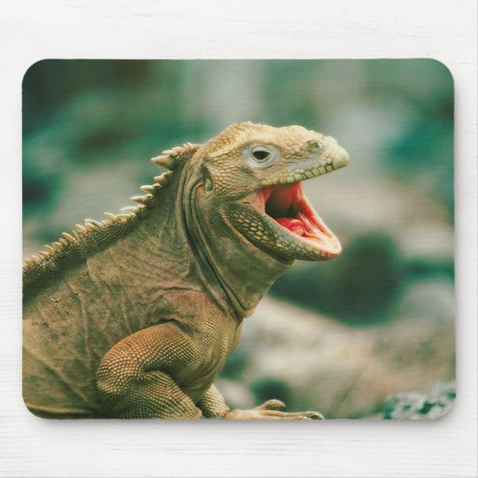 Iguana Says Rawr Mouse Pad