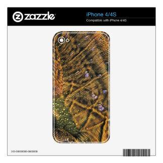 Iguana Scales Lizard Wildlife iPhone 4 Skin