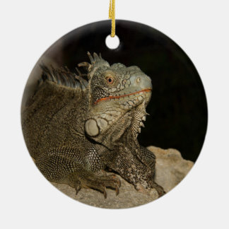 Iguana see you ceramic ornament