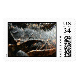 Iguana Skin Detail Postage