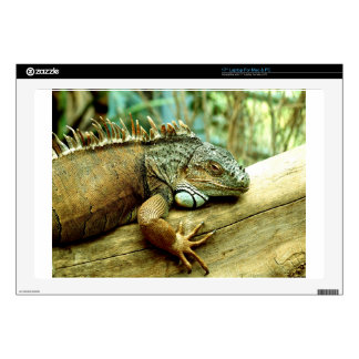 "Iguana Skin For 17"" Laptop"