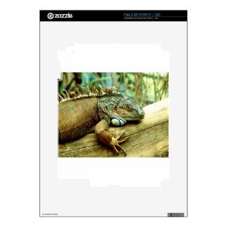 Iguana Skin For iPad 2