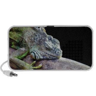 Iguana Portable Speaker