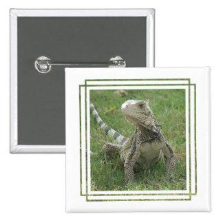 Iguana Square Button