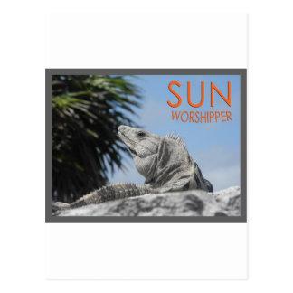 Iguana sun worshipper postcard