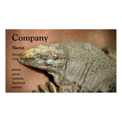 Iguana Tarjetas De Visita
