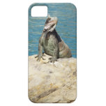Iguana Tropical Animal Photography iPhone 5 Cases