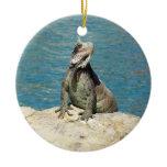 Iguana Tropical Animal Photography Double-Sided Ceramic Round Christmas Ornament
