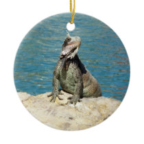 Iguana Tropical Wildlife Ceramic Ornament