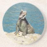 Iguana Tropical Wildlife Coaster