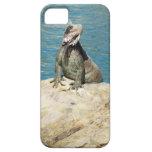 Iguana Tropical Wildlife iPhone SE/5/5s Case