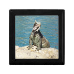 Iguana Tropical Wildlife Keepsake Box