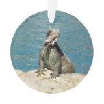 Iguana Tropical Wildlife Ornament