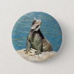 Iguana Tropical Wildlife Pinback Button