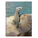 Iguana Tropical Wildlife Spiral Notebook