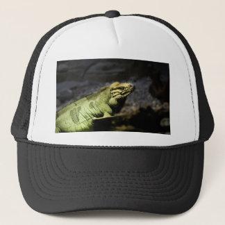Iguana Trucker Hat