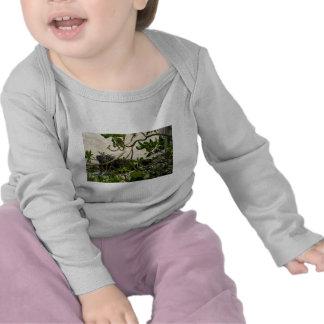 Iguana T-shirt