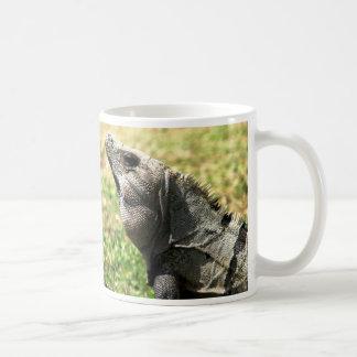 Iguana, Tulum, Mexico Coffee Mug