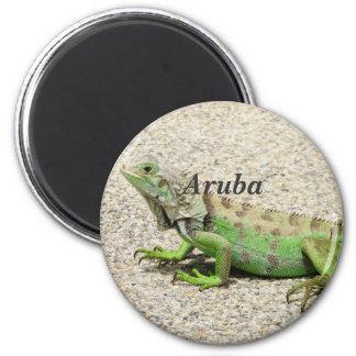 Iguana verde de Aruba Imán Redondo 5 Cm