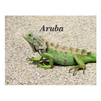 Iguana verde de Aruba Postales