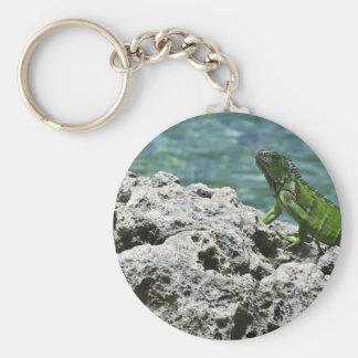 Iguana verde de las islas de Gran Caimán Llavero Redondo Tipo Pin