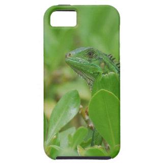 Iguana verde iPhone 5 Case-Mate carcasa