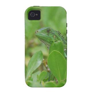 Iguana verde vibe iPhone 4 fundas