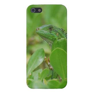 Iguana verde iPhone 5 carcasa
