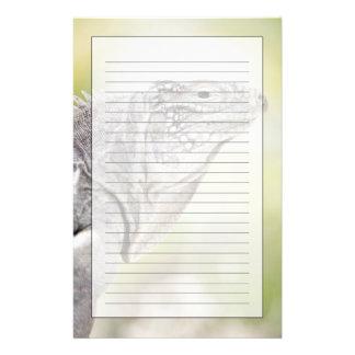 Iguana verde grande que toma el sol en el sol en papeleria
