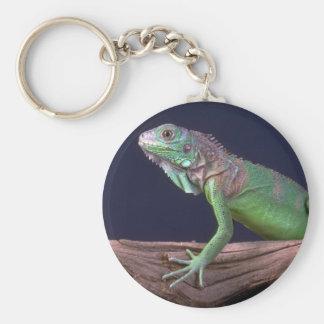 Iguana verde llavero redondo tipo pin