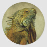 Iguana verde pegatina redonda