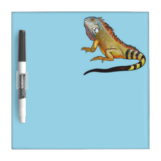 iguana verde pizarras