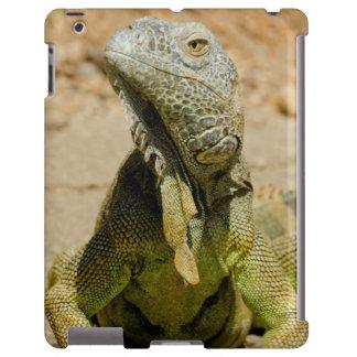 Iguana verde salvaje