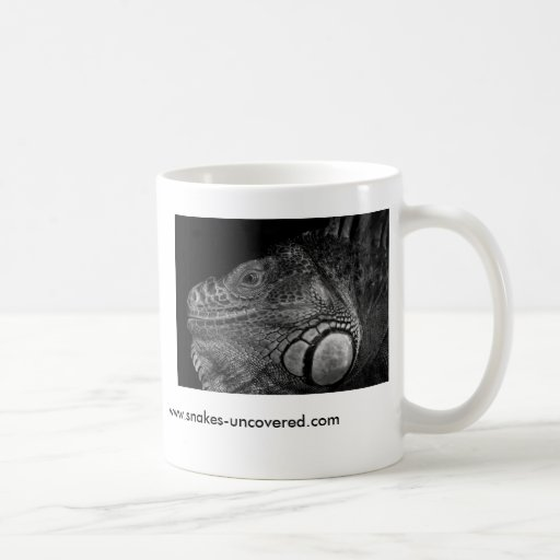 Iguana verde taza