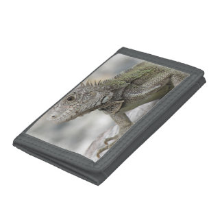 Iguana Wallet